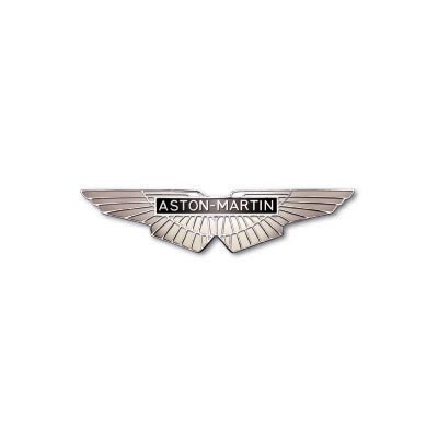 Custom aston martin logo iron on transfers (Decal Sticker) No.100127